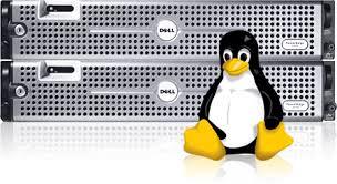 استضافة مواقع لينوكس